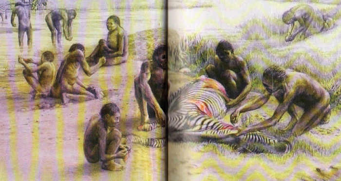 Depiction of 'hominid' Homo habilis from 6th grade California textbook, History Alive! The Ancient World, TCI, 2004, p. 16-17.